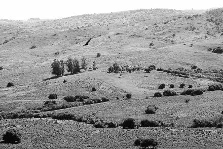 Los campos de Juan Antonio Presa hoy al igual que hace 200 años