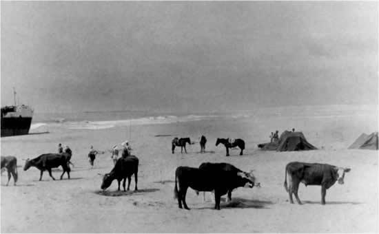 Una excursión al mar a mediados del s. XX en Aguas Dulces  y restos de un naufragio a la izquierda