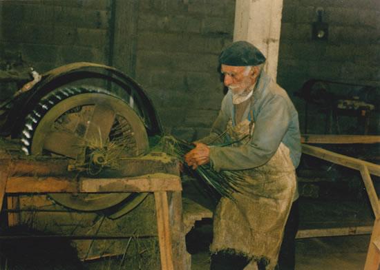 Fábrica de crin vegetal de Patricio Navarro  y luego de Silvestre Decuadro