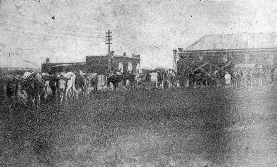Llegada de la caldera para la usina a Rocha (1909)